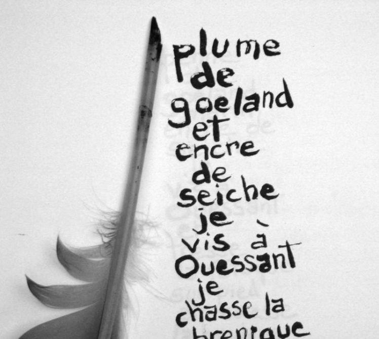 Illustre-plume-texte-2-encre-de-seiche