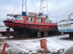 Décembre: Le Manguier attend patiemment la neige sur le terre plein de Rivière au Renard en Gaspésie