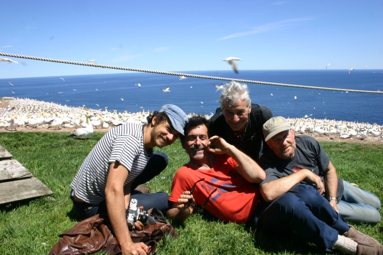 Le boys band à l'île de Bonnaventure (sans lunettes ?)