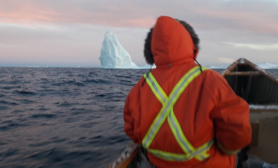 loulou iceberg