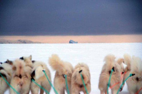 En route sur la banquise : Ice not good …